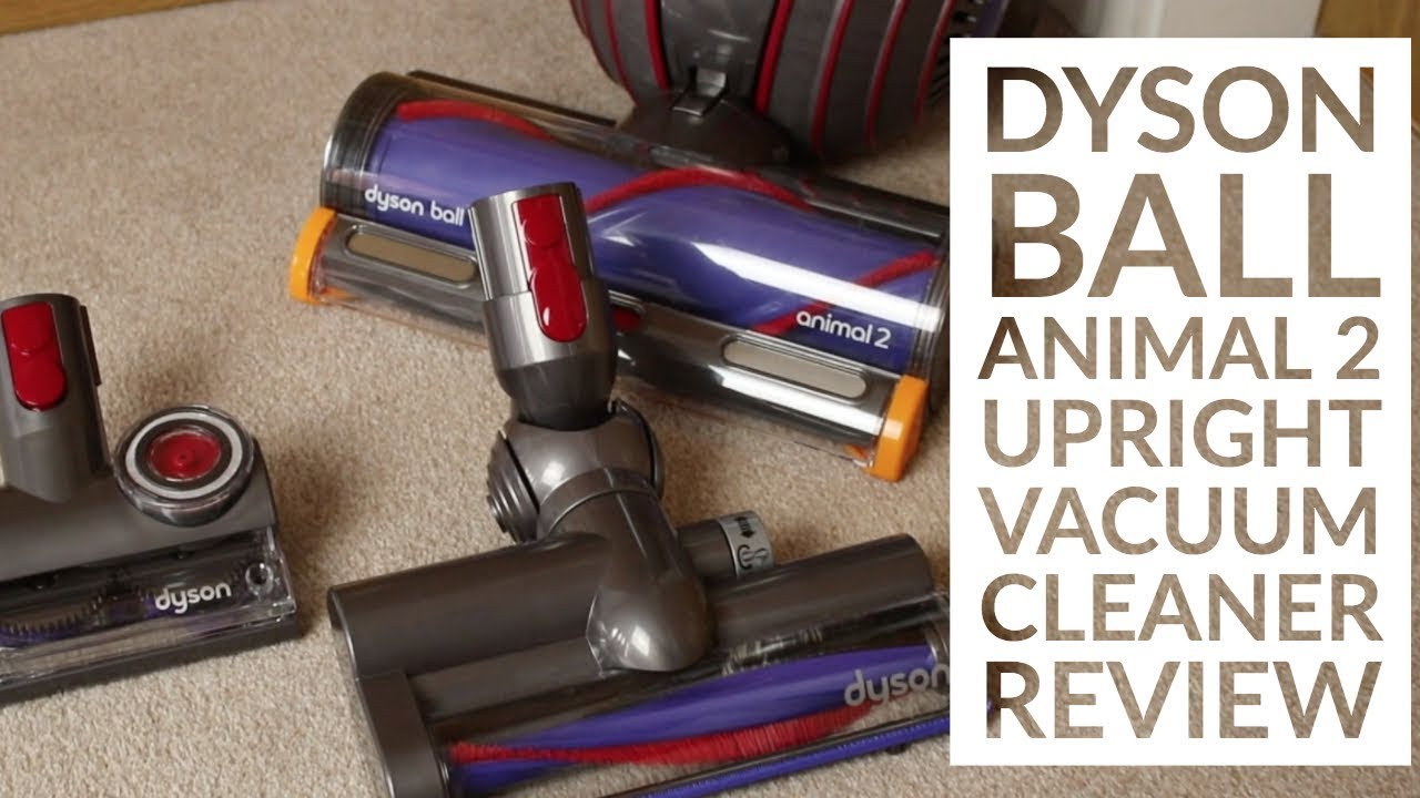 manual for dyson animal 2